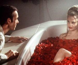 american beauty, rose, and movie image