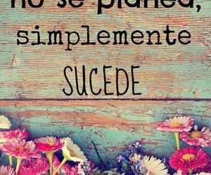frases and vida image