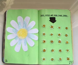 wreck this journal and my wreck this journal image