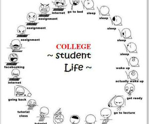 life, student, and funny image