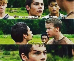 funny, thomas, and the maze runner image