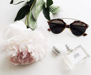 accessories, rose, and flower image