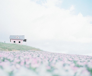 house, flowers, and pink image