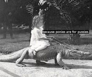 aligator, blackandwhite, and funny image