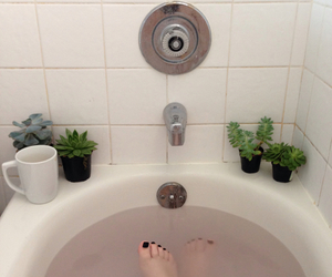 grunge, plants, and bath image