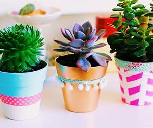 inspiration, plants, and room decor image