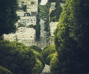 city, green, and tree image
