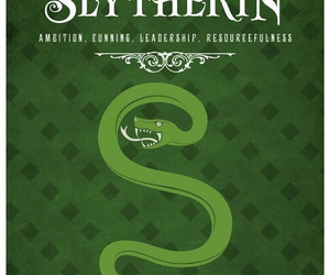 slytherin, harry potter, and hogwarts image