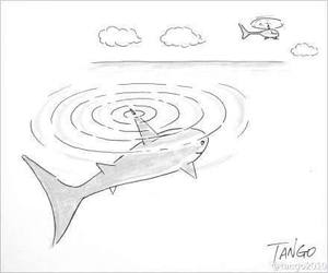helicopter, sea, and shark image