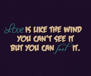 love, wind, and quote image
