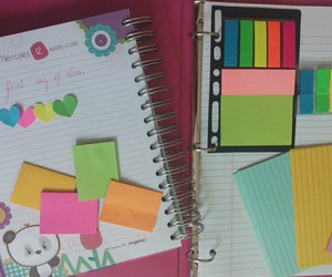 colors, school, and love image