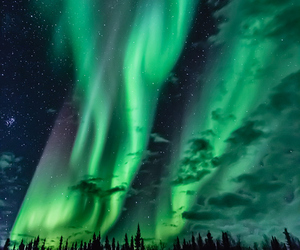 northern lights, stars, and night image