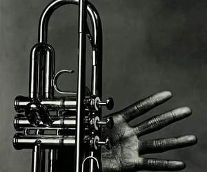 brass, fingers, and musician image