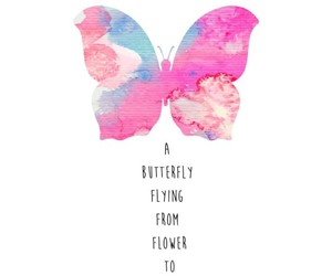 butterfly, quotes, and pink image