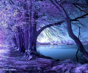 awesome, lake, and purple image