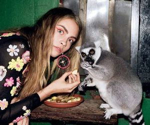 animals, cara delevingne, and funny image