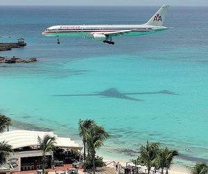 beach, plane, and sea image