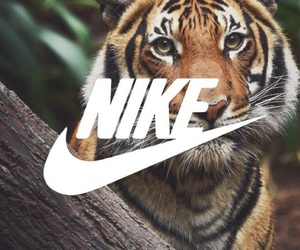nike, animal, and tiger image