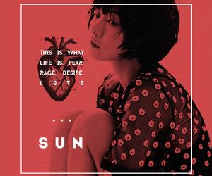 quote, sun, and sense8 image