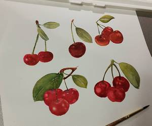 berry, cherry, and sketch image