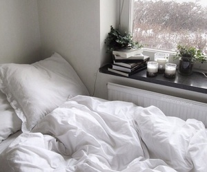 bed, bedding, and luxury image