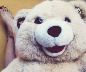 bear, stuffed toy, and cute image