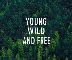 free, wild, and young image