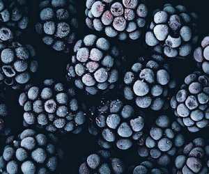 berries and food image