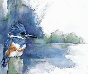 bird and watercolor image
