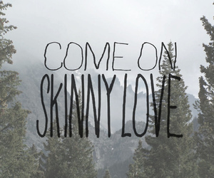 birdy, bon iver, and skinny love image