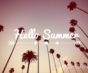 palmier and hello summer image