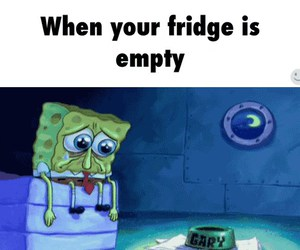fridge, wallpapers, and funny image
