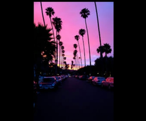 california, sunset, and palm trees image