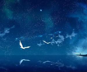 sky, bird, and night image