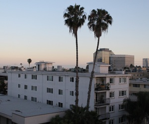 summer, california, and city image