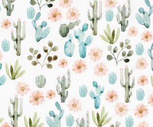 cactus, colorful, and cute image
