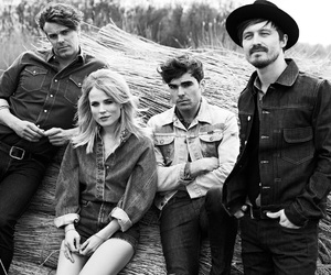 pretty, ilse delange, and the common linnets image