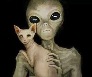 alien and cat image