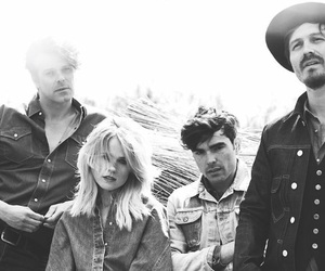 the netherlands, common linnets, and eurovision image