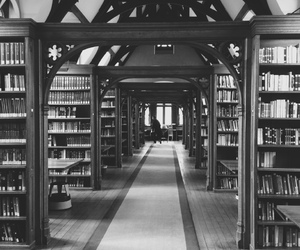 black and white, book, and library image