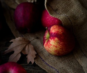 apples, fall, and harvest image