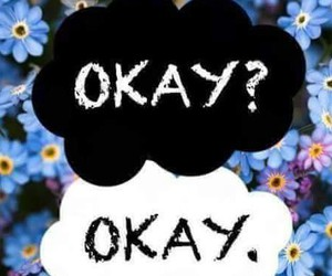 flowers, wallpaper, and the fault in our stars image