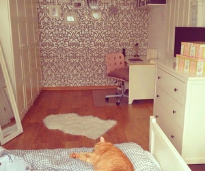 room and cat image