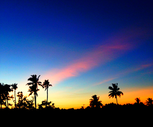 blue, gold, and indonesia image