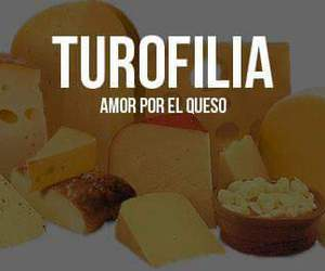 queso image