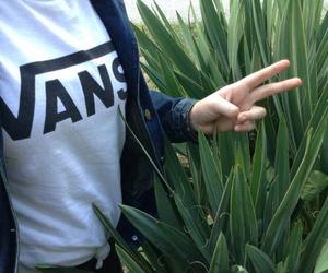 plants, vans, and grunge image