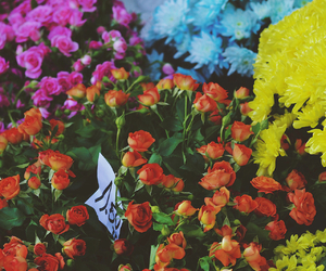 beautiful, flowers, and market image