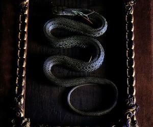 pagan, serpent, and snake image