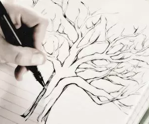 teen wolf, tree, and lydia image