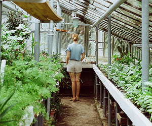 girl, vintage, and greenhouse image